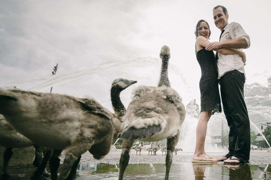 6-geese-engagement-portland