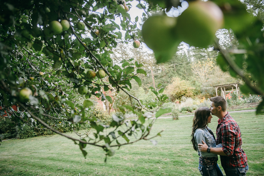 10 apple tree engagement session seattle