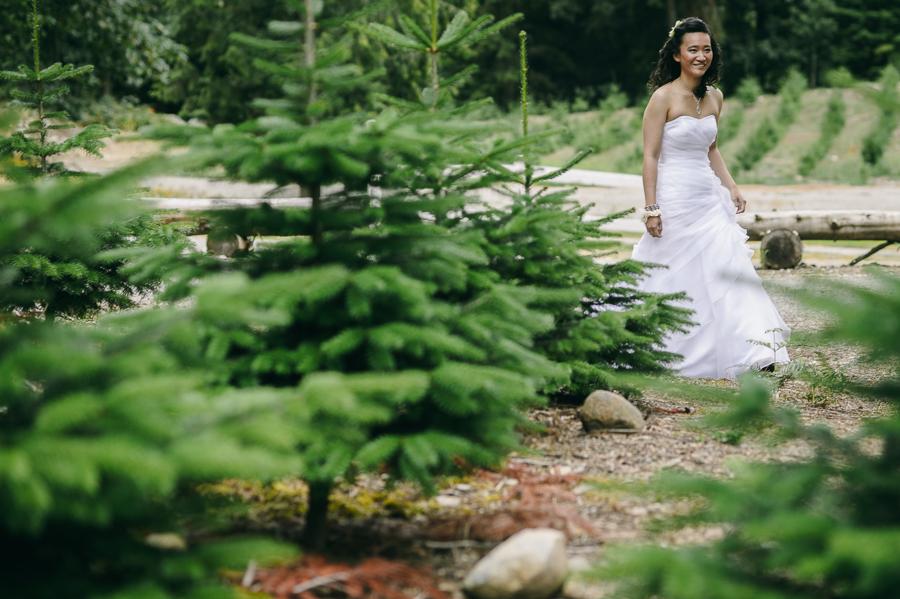 12 bride christmas tress