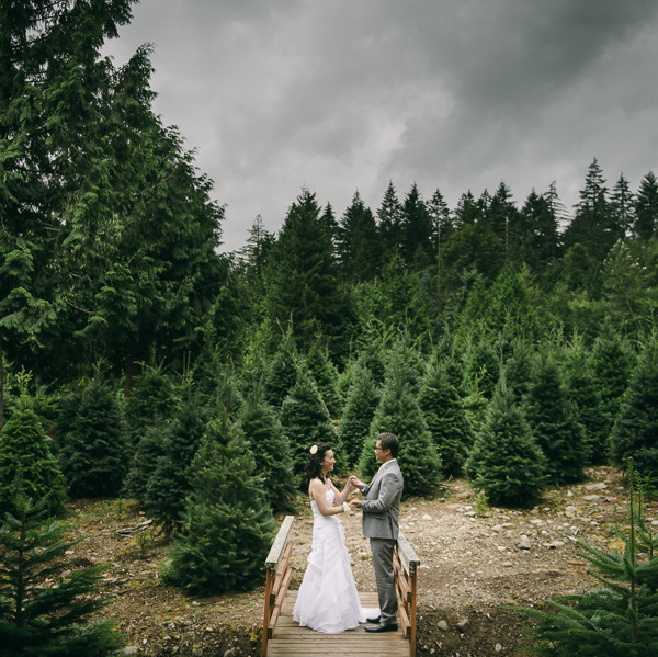 Trinity Tree Farm Wedding - Nora & Ponet