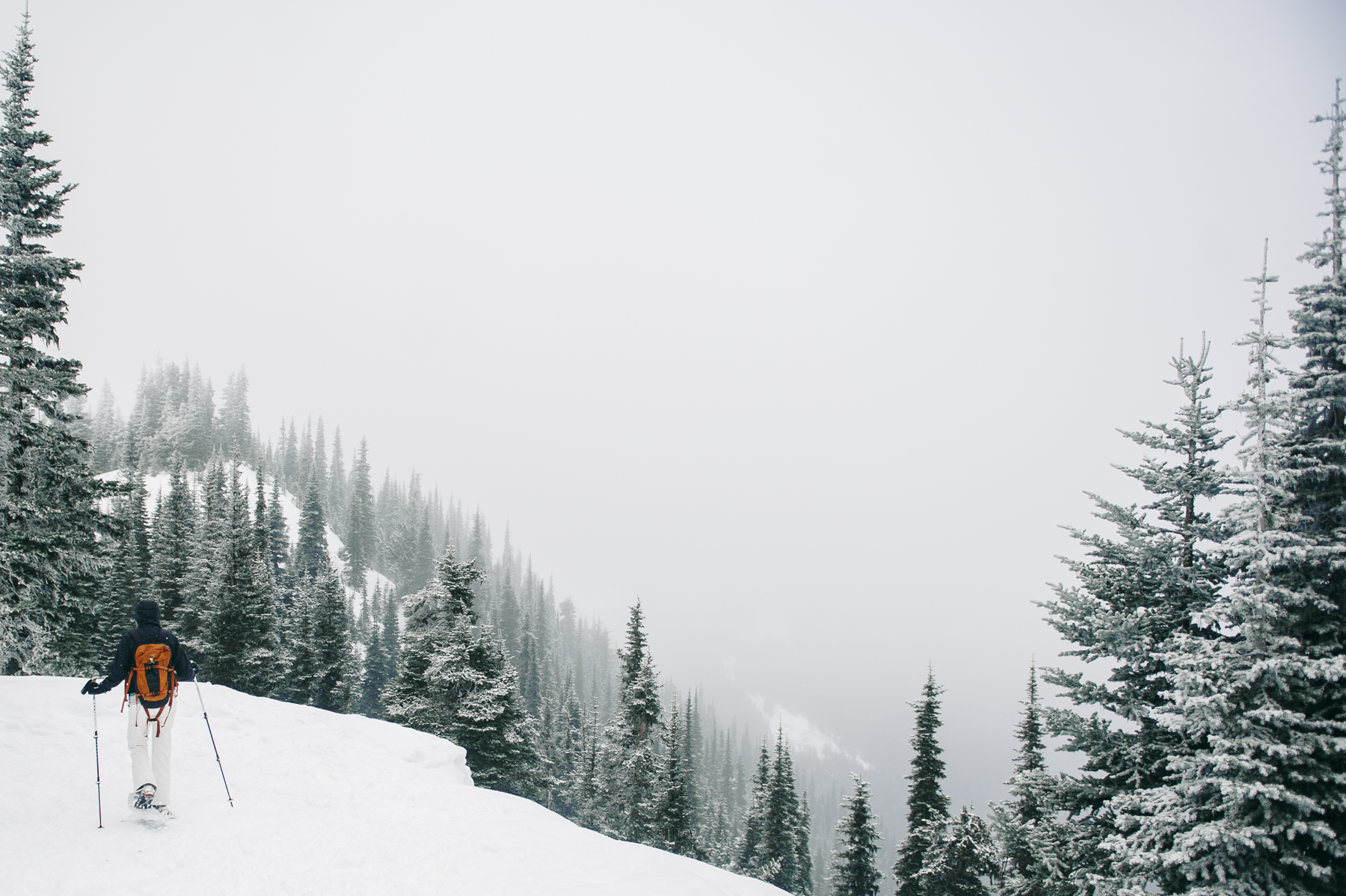 hurricane-ridge-snowshoeing-adventure-photographer-1