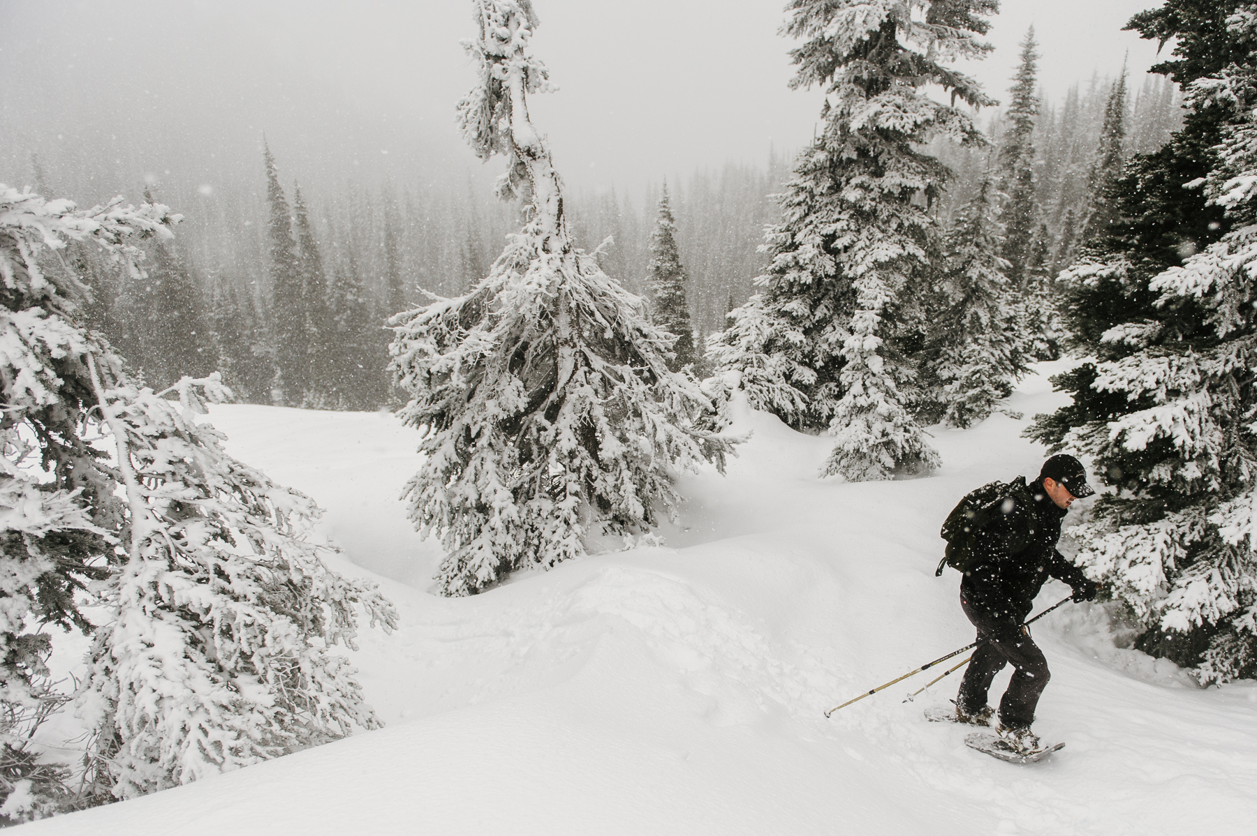 hurricane-ridge-snowshoeing-adventure-photographer-8