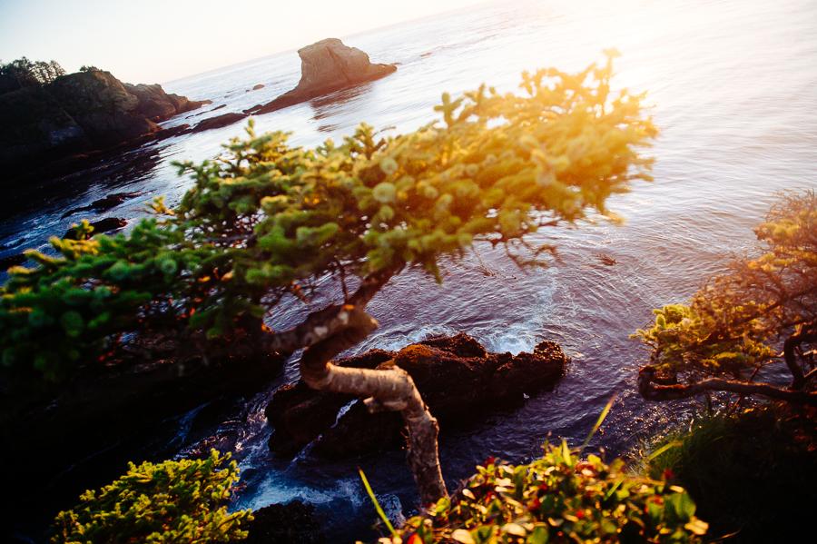 salt-creek-beach-maternity-session-port-angeles-26