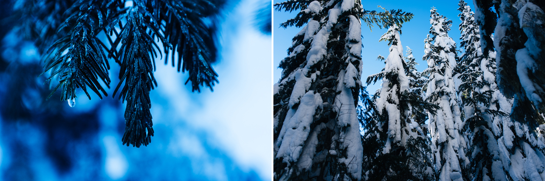 stevens-pass-nordic-center-snowy-engagement-session-2