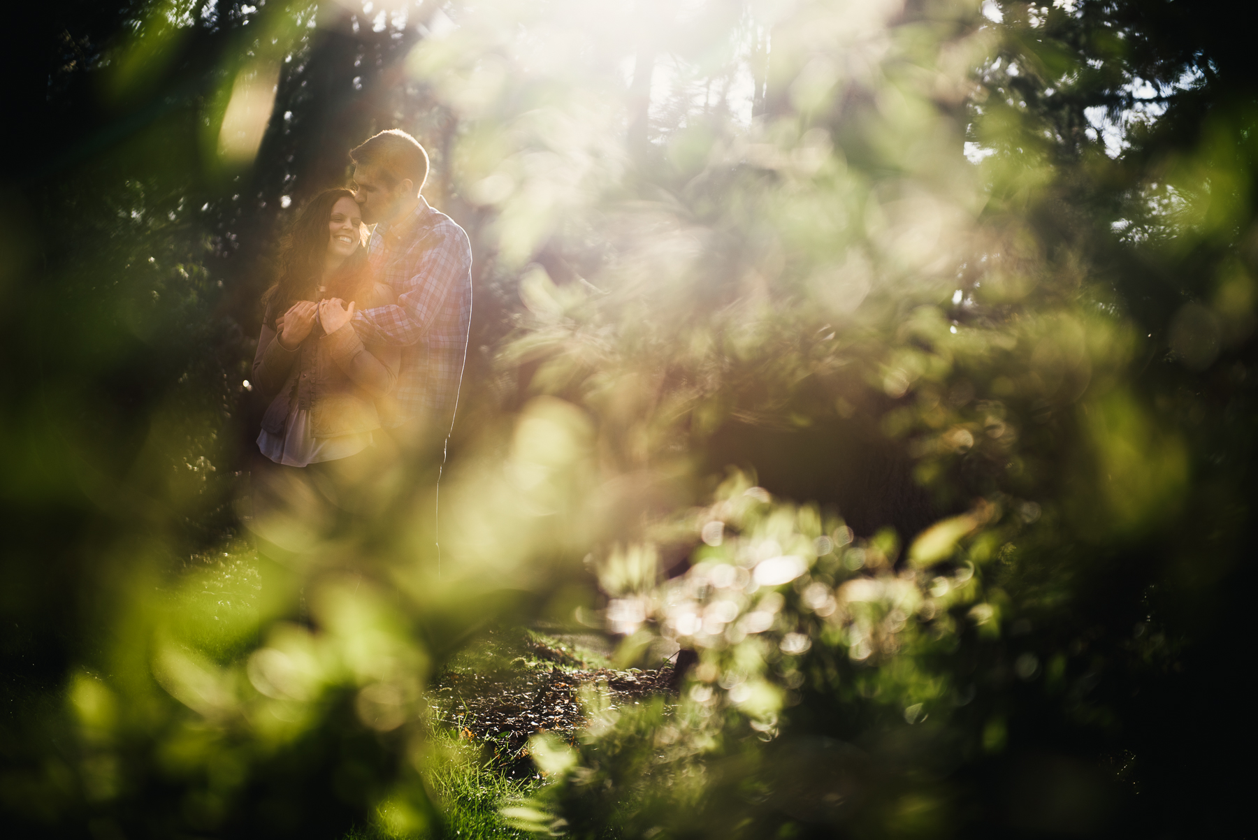 washington arboretum sunset engagement