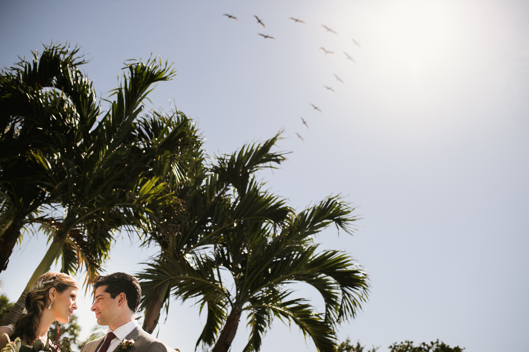 florida destination wedding portrait bird flying v
