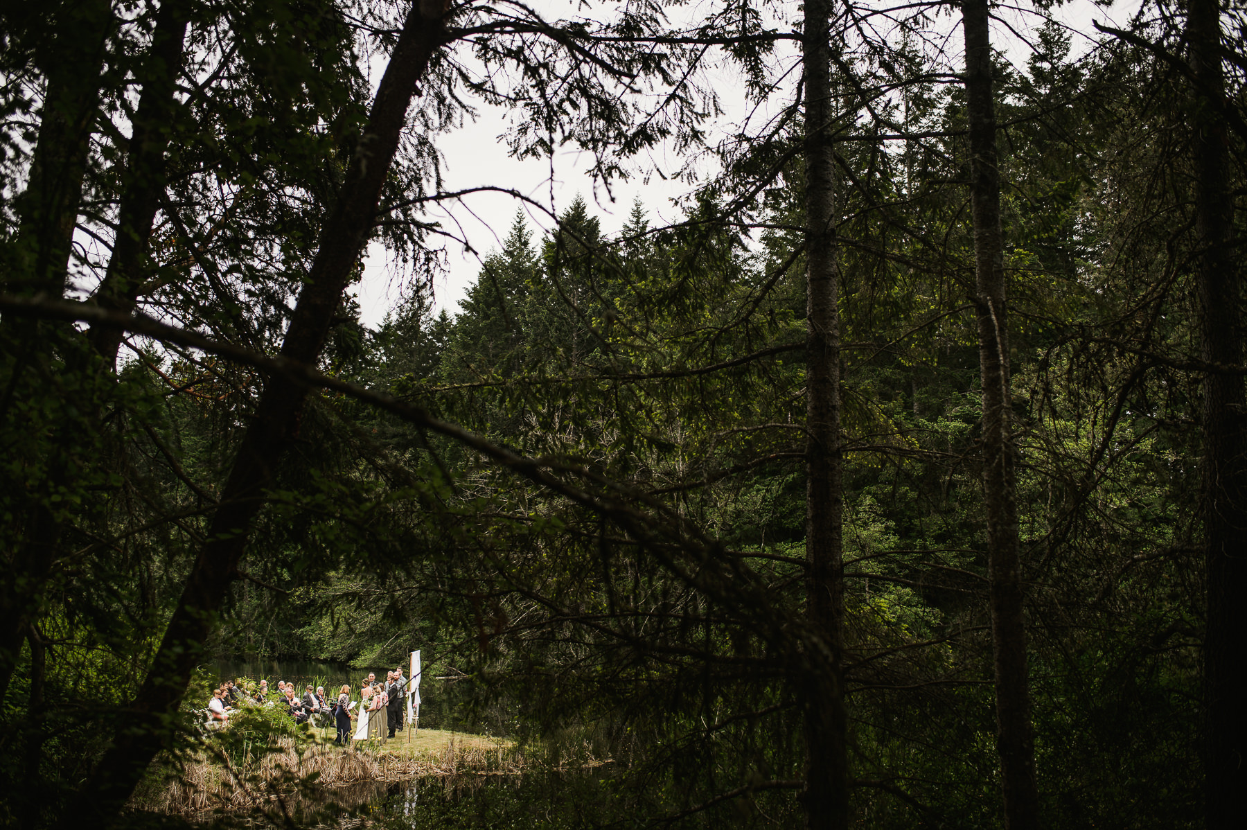 lakedale wedding forest ceremony