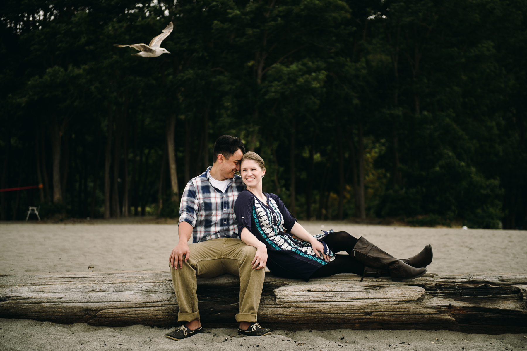 beach seagull engagement photos