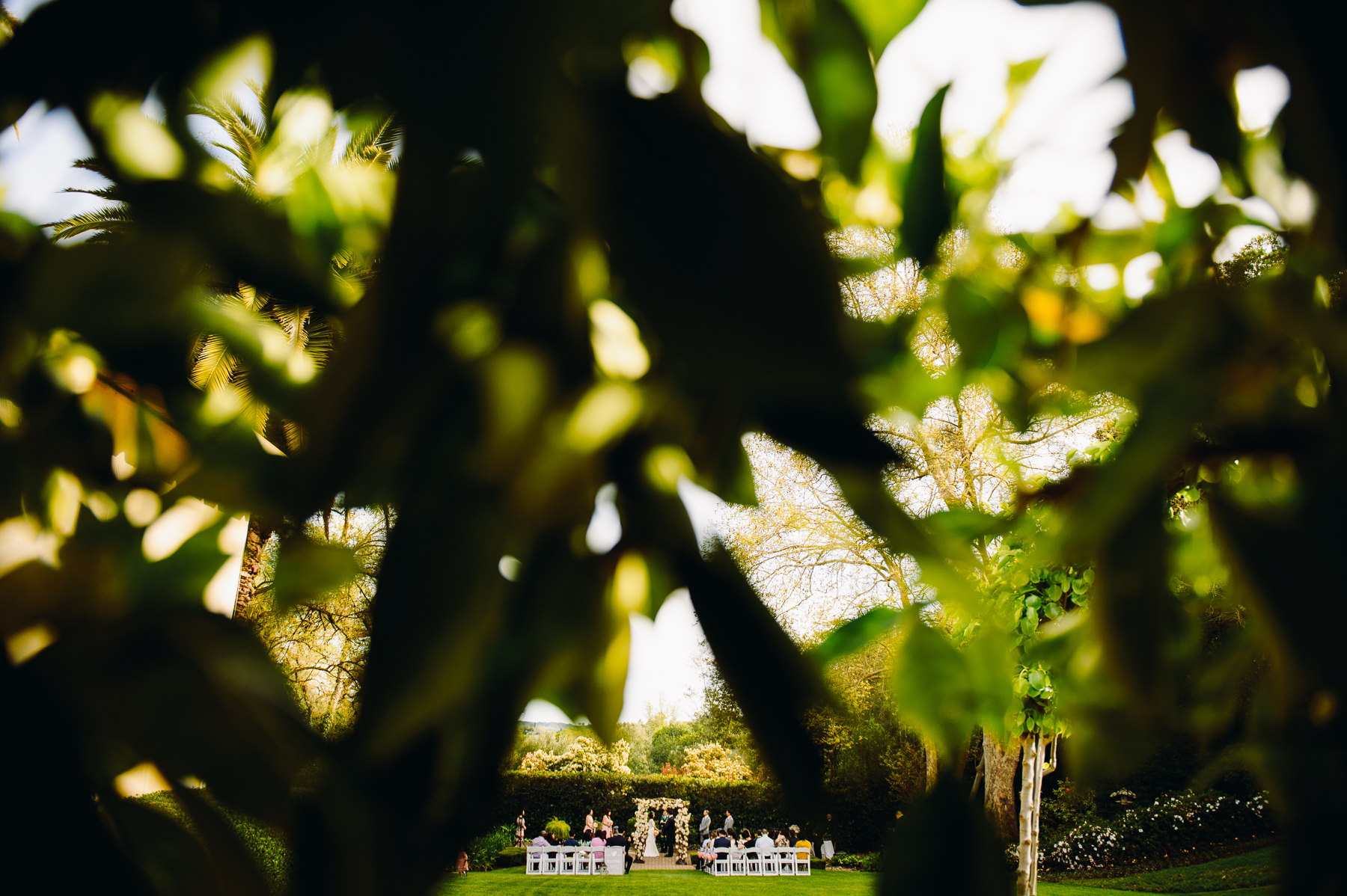 Madrona Manor Wedding ceremony