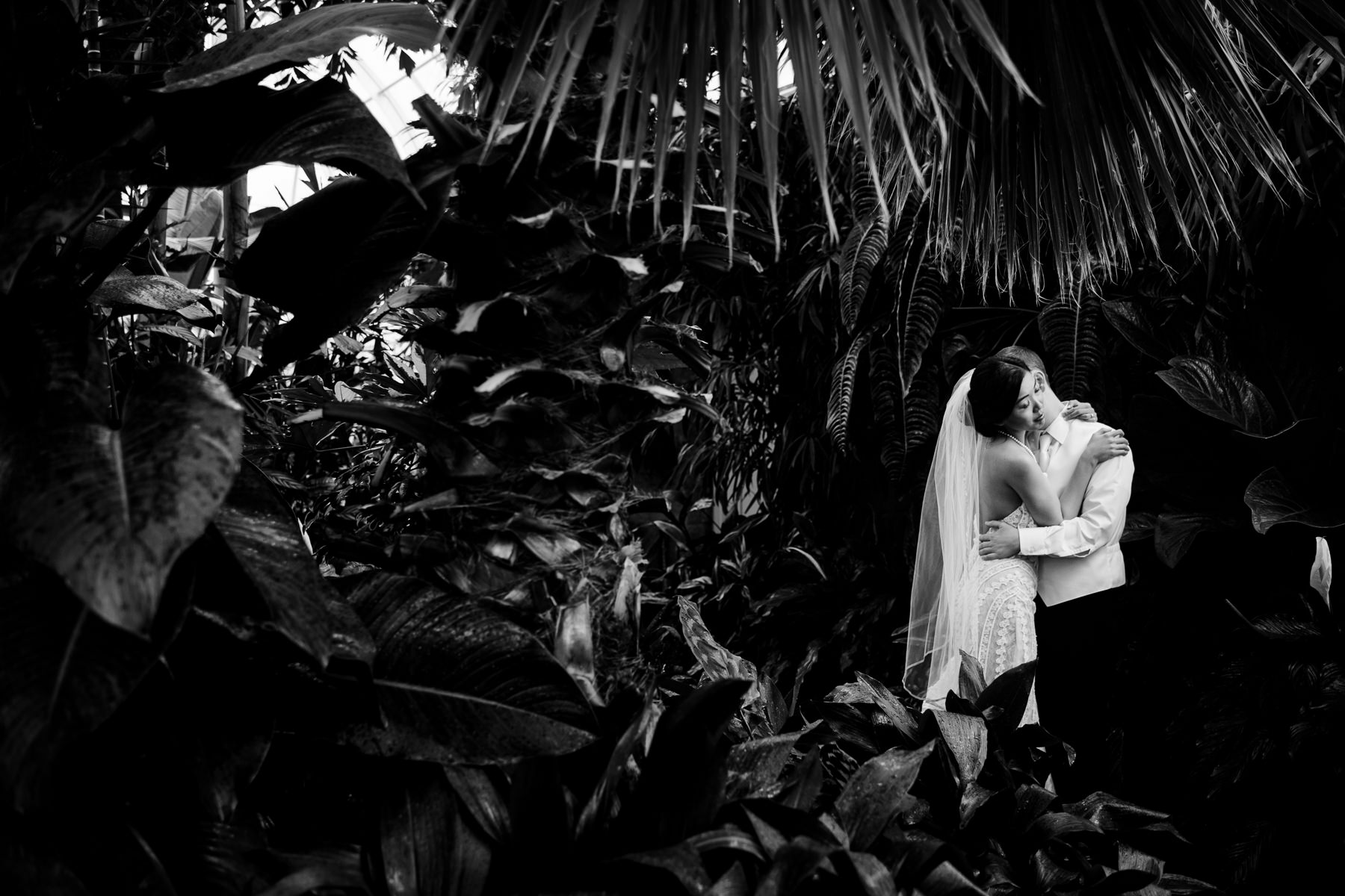volunteer park conservatory wedding photos