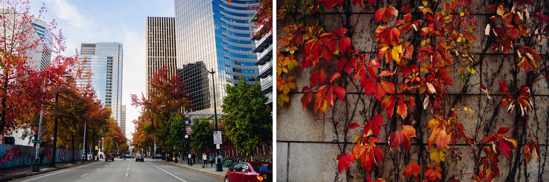 fall downtown seattle