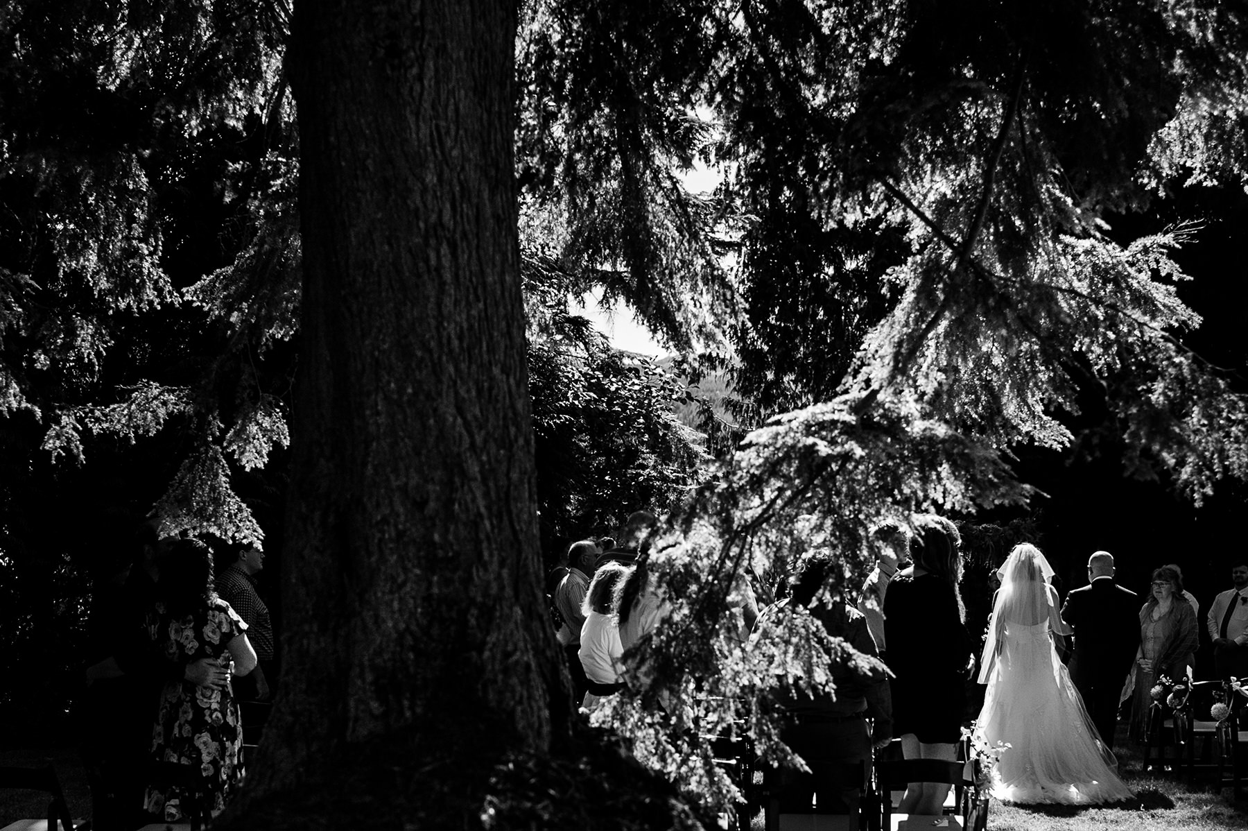 Bellingham backyard wedding ceremony