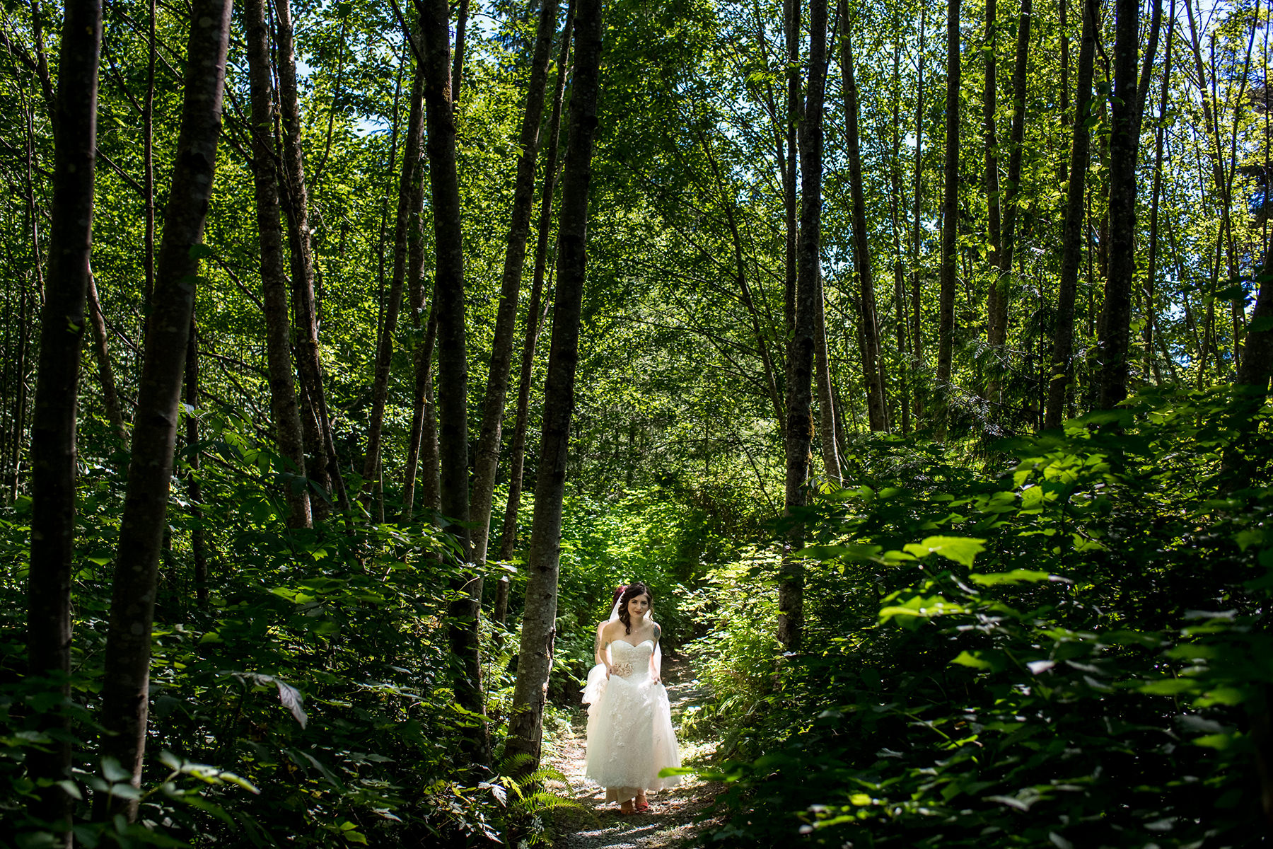 Bellingham backyard wedding forest first look