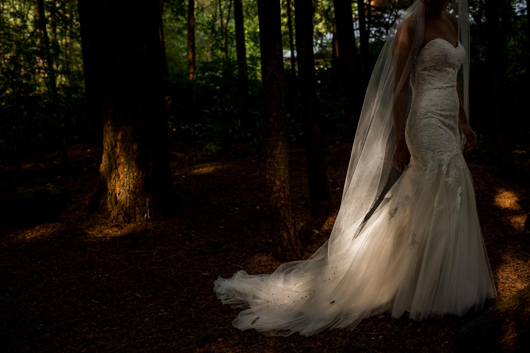 wedding dress in amazing light