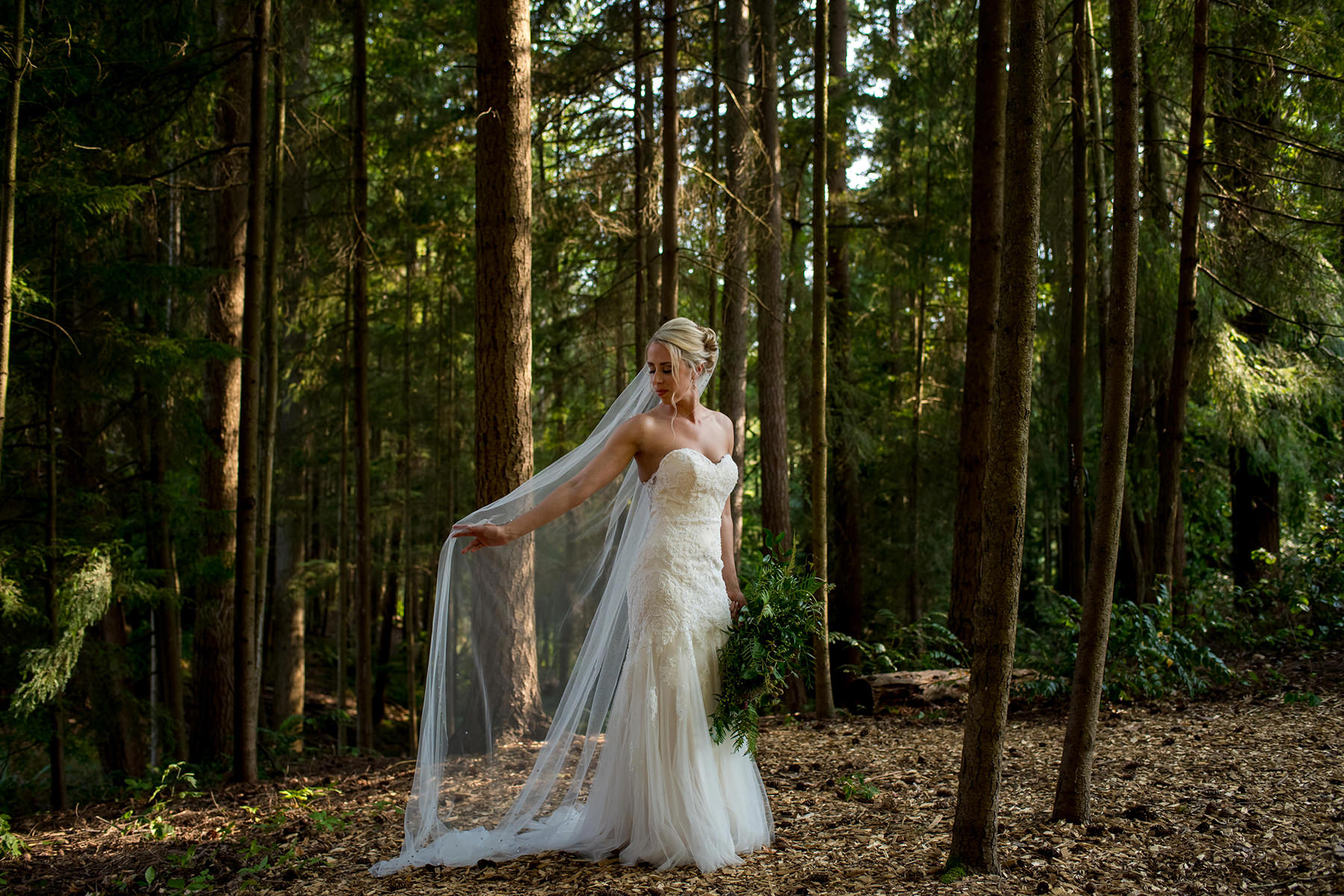 bridal portait in the forest