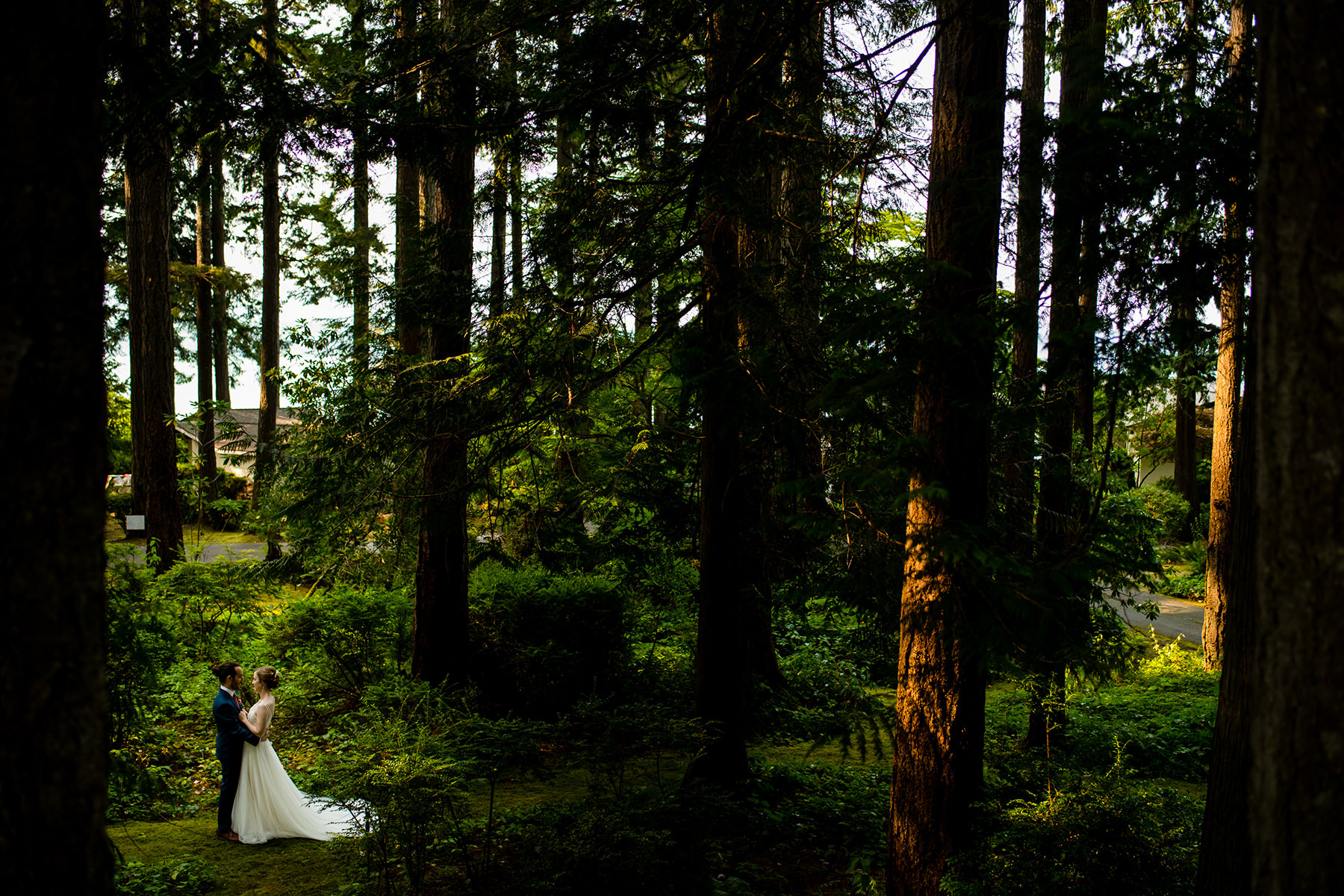 dramatic backyard forest wedding photos